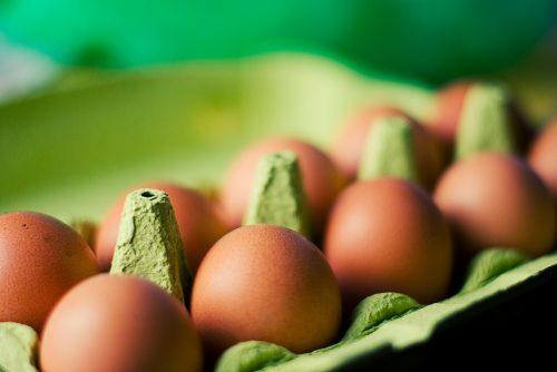 Karton mit 10 Eiern