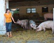 Tierhaltung am Adamhof