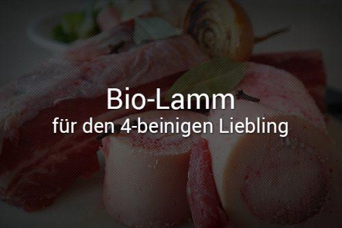 Bio-Lamm für den Hund