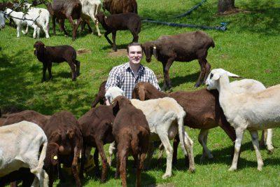 Bio-Bauernhof Ratoinig – Familie Fasching