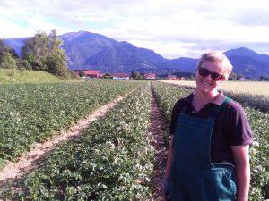 Bio Kartoffelfeld der Familie Flödl