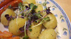 Micro Greens zum Verfeinern von Speisen