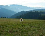 Ein schöner Fleck Erde inmitten der Wimitzer Berge