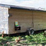 Mobiler Hühnerstall für die Hühnerschar
