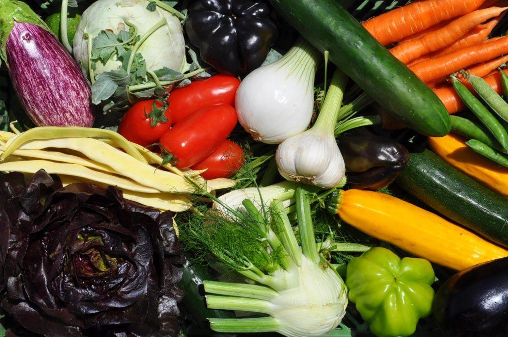 Gemüse Box