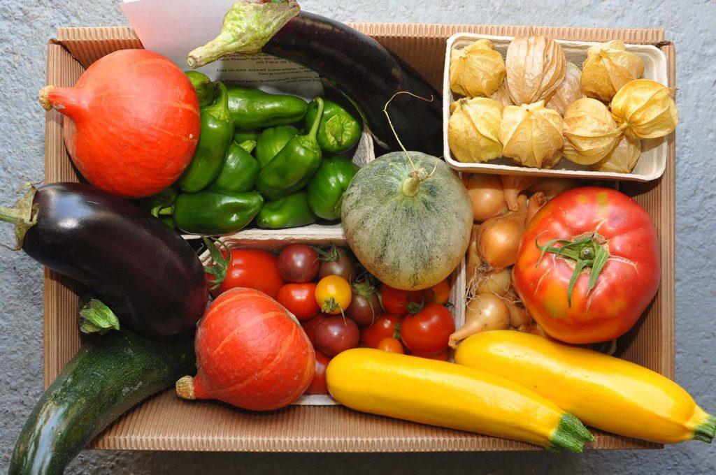 Gemüsebox vom Biohof Tauschitz